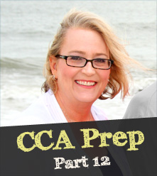 Prepping for the CCA: Part 12: Success! My Experience Earning the CCA Credential